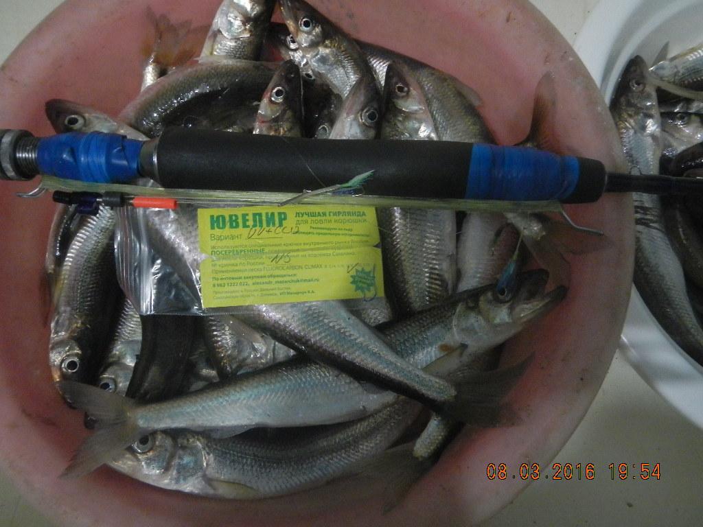 рыбалка на корюшку в южно сахалинске